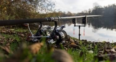 best carp fishing setup for beginners