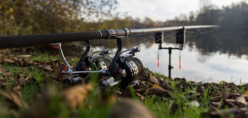 best carp fishing setup for beginners