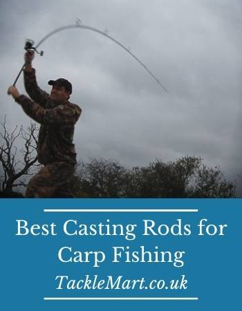 best casting rods for carp fishing
