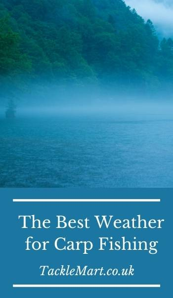 The Best Weather for Carp Fishing