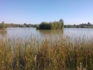 Cackle Hill Fishery Kent
