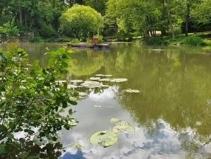 major fishing lakes kent