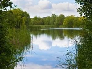 monk lakes kent