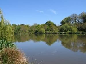 Edenbridge Angling Society