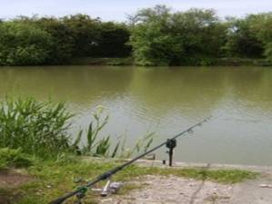 Sandwich & District Angling Association