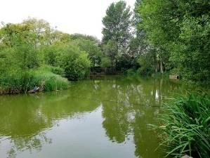 Evegate Fishing Lake
