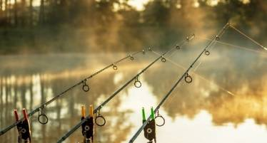best carp fishing tackle deals