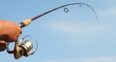 best coarse fishing rod deals