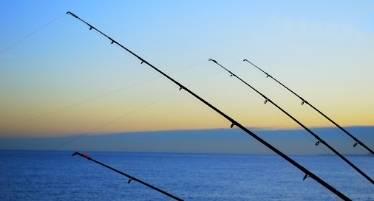 best sea fishing rod deals