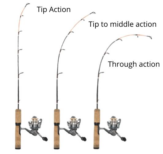 best action for carp rods