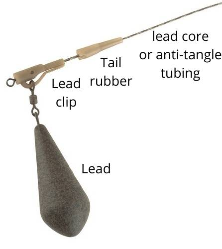 carp rig for beginners