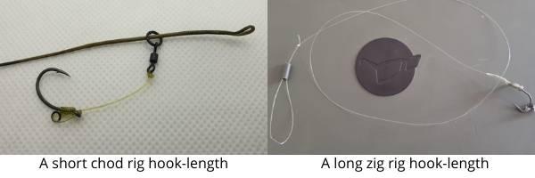 carp rigs for beginners - short vs long hook-links
