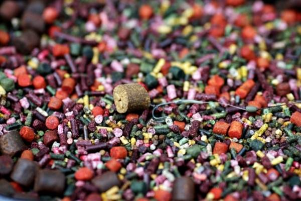 pellets as one of the best baits for carp fishing